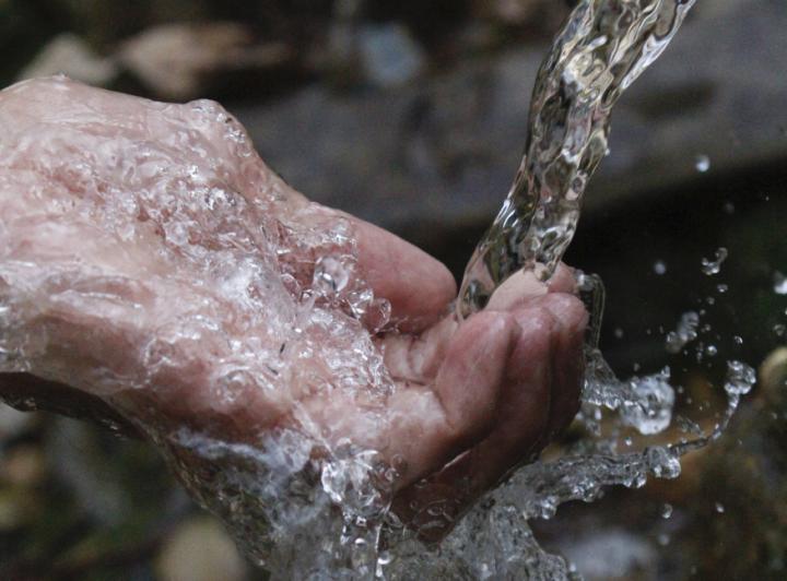 La calidad del agua, factor decisivo en el éxito o fracaso de una aplicación de fitosanitarios.